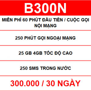 B300n