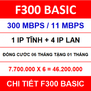 F300 Basic 06 Th