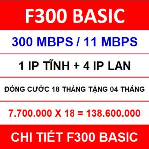F300 Basic 18 Th