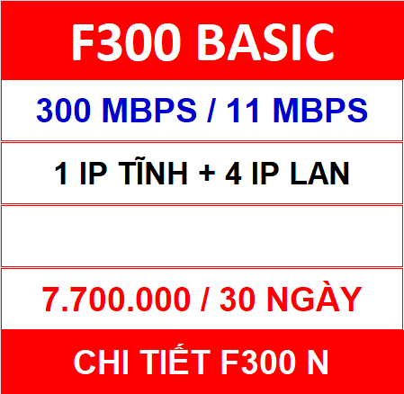 F300 Basic