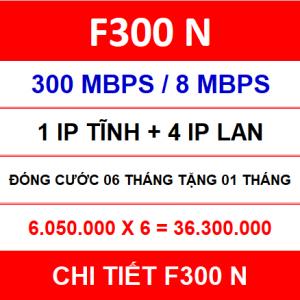 F300 N 06 Th