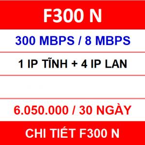 F300 N