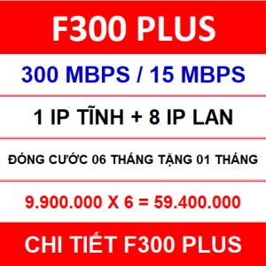 F300 Plus 06 Th