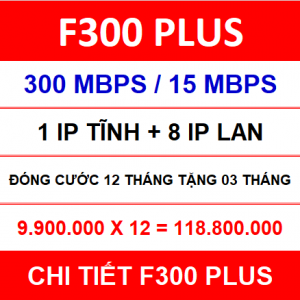 F300 Plus 12 Th